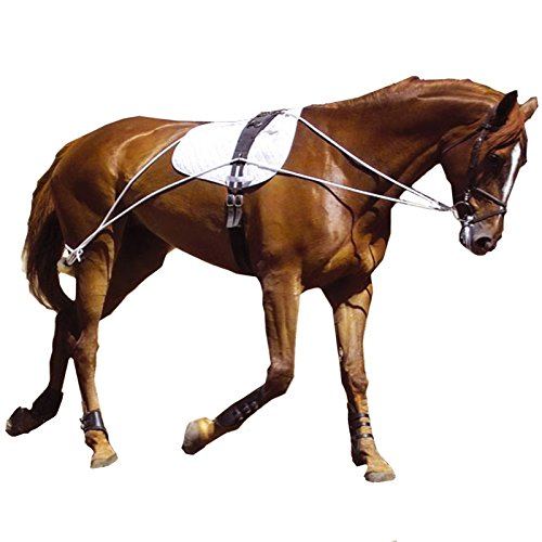 Pessoa Training System (Hunters Saddlery Ultimate Horse Lunging Training Aid System Lunge Equipment (Cob/Horse, Black))