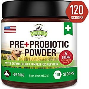 Probiotics for Dogs, Digestive Enzymes, Prebiotics, Pumpkin - 120 Grams 5 Billion CFU - Dog Probiotic Powder Supplement for Pet Allergy Relief, Constipation Immune Support Diarrhea Upset Stomach, USA 2