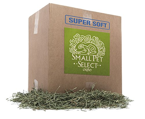 "Small Pet Select 3rd Cutting ""Super Soft"" Timothy Hay Pet..."