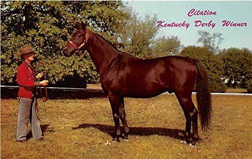 Calumet Farm's Citation Kentucky, KY, USA Old Vintage Horse Racing Postcard Post Card