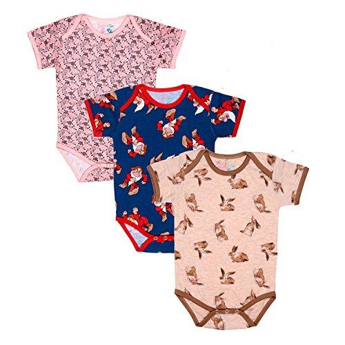 Sofie & Sam Organic Cotton 3 Pack Combo Baby Bodysuit Onesie Romper for Age 9 to 12 Months - Rabbit/Magician/Grey Garden ()