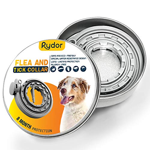 (RYDOR Dogs Flea Tick Collar - Natural Flea Prevention Collar Dogs - One Size Fits All - Easily Adjustable, Waterproof Natural Essential Oil Extracts Flea Tick Control Collar)