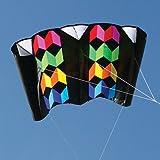 Rainbow Illusion Power Sled 36 Kite