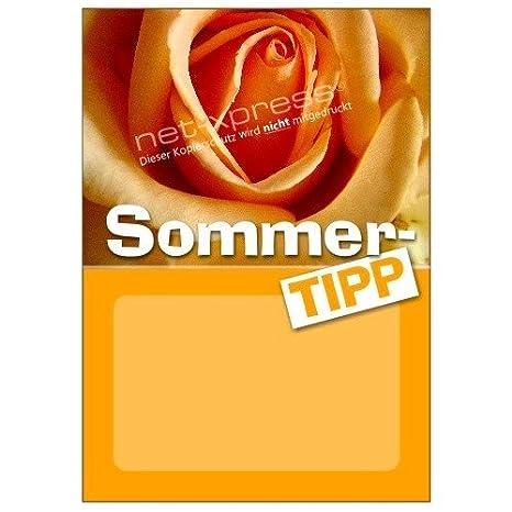 Net-Xpress Placa para Sommer-Angebote Din A1, Cartel de ...