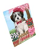 Doggie of the Day Rosie 25 Cent Kisses Tibetan Terrier Dog Blanket BLNKT125652 (50x60 Sherpa)