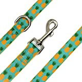 waaag Dog Leash Cat Leash, Pineapple Tropical Summer Dog Leash for Small, Medium and Large Dogs ((Small) 5/8 in. x 5ft)