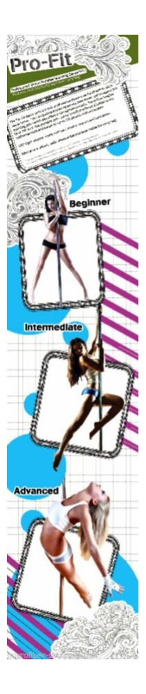 Dance Pole 50mm Pro-Fit Professional Portable Spinning plus Attachable LED Light by Unknown (Image #2)