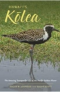 Hawaiis Kolea The Amazing Transpacific Life Of Pacific Golden Plover