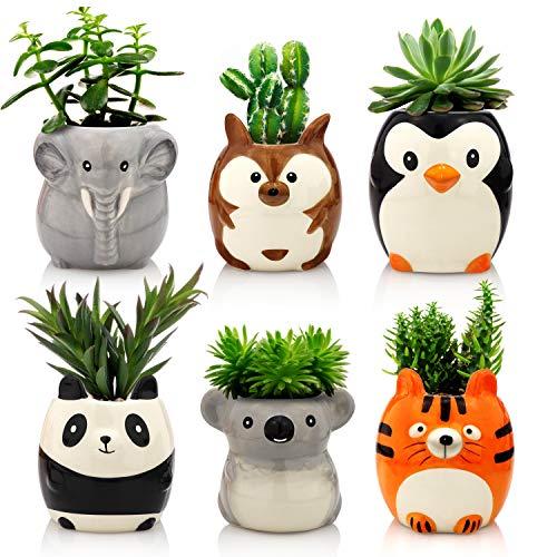 Matty's Garden Animal Ceramic Succulent Planters Set of 6 | 2.5 Inch Small Cactus Pots with Drainage Hole Penguin Koala…