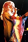 Dolly Parton Rare In Concert 24x36 Poster