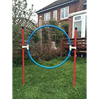 stick into the ground training hoop for dog agility (due to amazons new postage policy we can only post this item to mainland uk (England, Wales, and Scotland only))