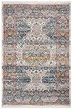 Safavieh Vintage Persian Collection VTP483B