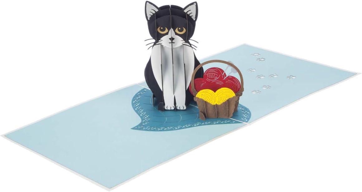Cardology Biglietto di compleanno 3D con gatto Tuxedo regalo 3D per gli amanti dei gatti 15 x 15 cm