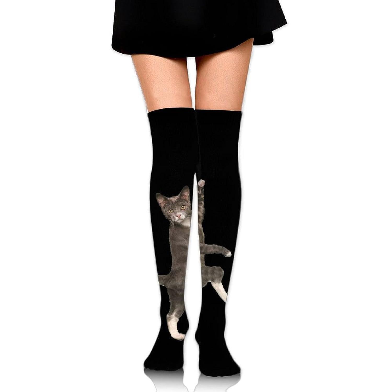 Cheap Cat Women's Novelty Knee High Socks Sports Crew Socks