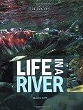 Life in a River, Valerie Rapp, 0822521369