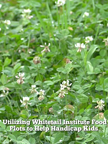How, When and Why You Should Frost Seed Your Food Plots (Perennial Food Seeds)
