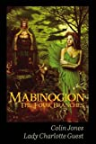 img - for Mabinogion, the Four Branches: The Ancient Celtic Epic book / textbook / text book
