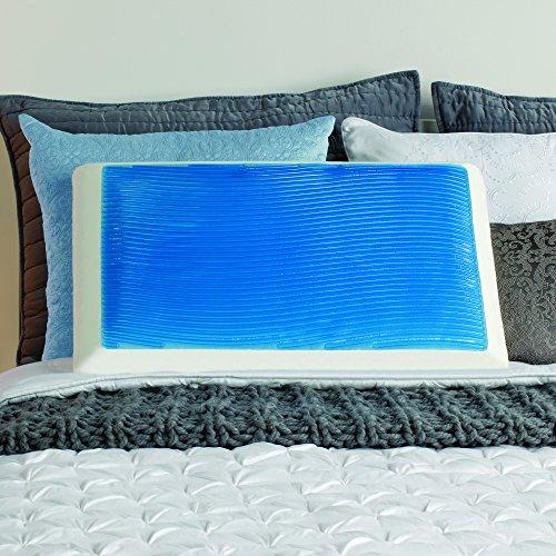 Sealy Memory Foam & Hydraluxe Gel Bed Pillow