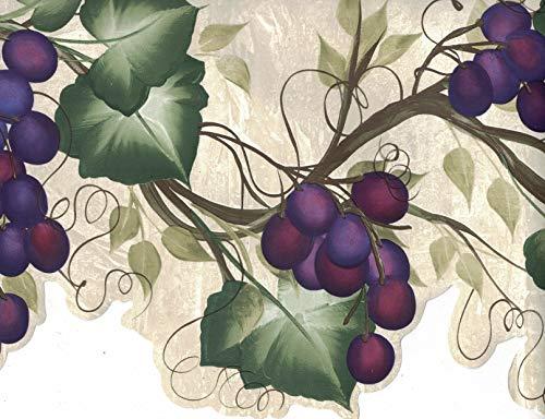 Wallpaper Border - Grapes Wallpaper Border 240B63992 by Brewster Wallcoverings
