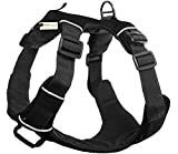 Paws & Pals Pet Harness for Dogs Cats - No-Pull Durable Padded Nylon Mesh Vest - Easy Secure Control (Small, Orange)