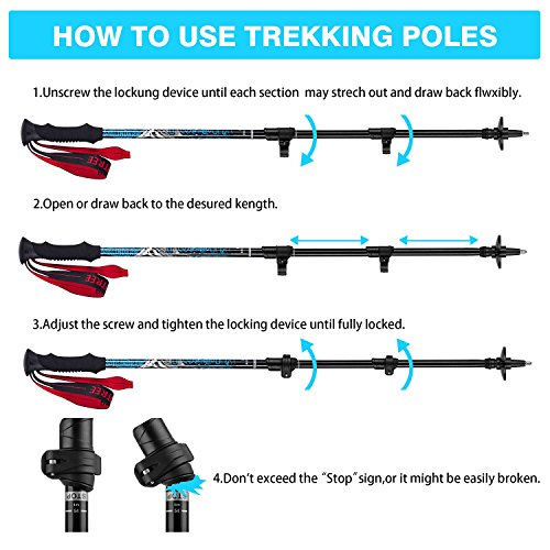 Brotree 2 Pack Anti Shock Trekking Hiking Walking Trail Poles with EVA Foam Grip, Flip-Lock and Tungsten Carbide Tips - Ultraweight & Collapsible