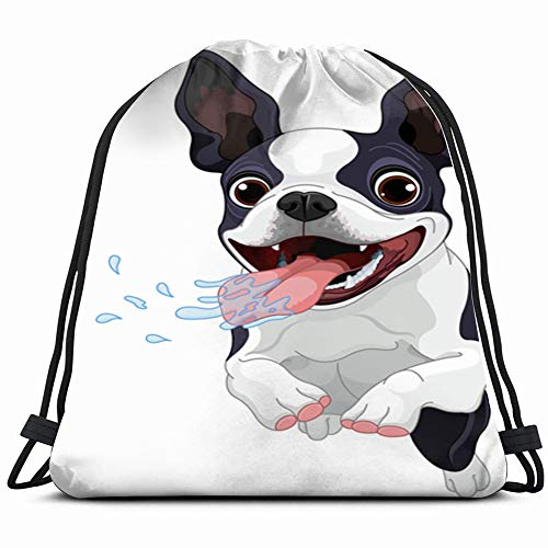 - Cute Boston Terrier Abstract Dog Animals Wildlife Drawstring Bag Backpack Gym Dance Bag Reversible Flip Sequin Bling Backpack For Hiking Beach Travel Bags