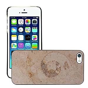 Print Motif Coque de protection Case Cover // M00154252 Petrification fósil Nautilus fósil // Apple iPhone 5 5S 5G