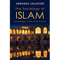 The Sociology of Islam: Knowledge, Power and Civility