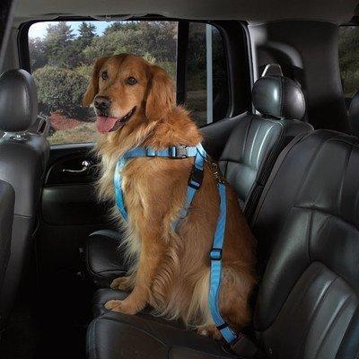 Compañero de Cruising perro coche Arnés de nailon, XS, negro por ...