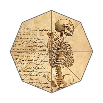 kouo Custom Medical Anatomie Schädel Wissenschaft Diagramm Muster ...
