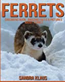 Childrens Book: Amazing Facts & Pictures about Ferret