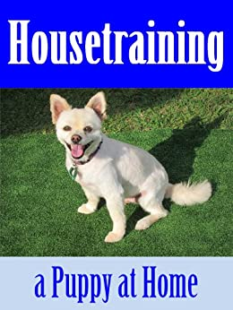 Housetraining Puppy Home Care Training ebook