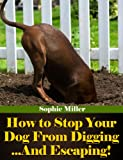How to Stop Your Dog From Digging ...And Escaping!