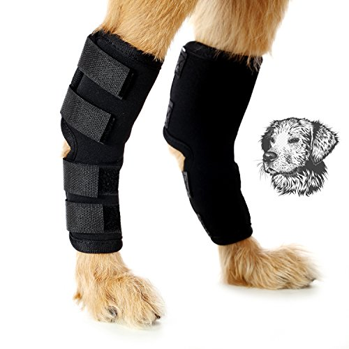Dog Hock Joint Brace Veterinarian Approved Protect Dog Re...