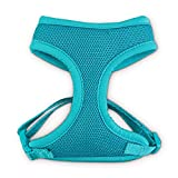 GOOD2GO Teal Cat Harness and Leash Set, Standard