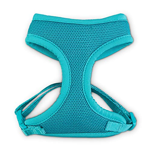(Good2Go Teal Cat Harness and Leash Set, Standard)