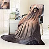 YOYI-HOME Season Duplex Printed Blanket for Bed Or Couch Cat Lover Cat Portrait