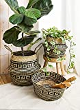 LE TAUCI Seagrass Belly Basket, Woven Plant Pot