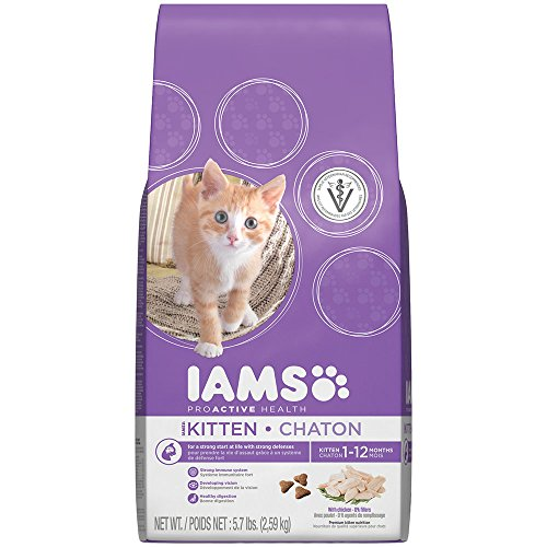 IAMS PROACTIVE HEALTH Kitten  Chicken Recipe Dry Cat Food 5.