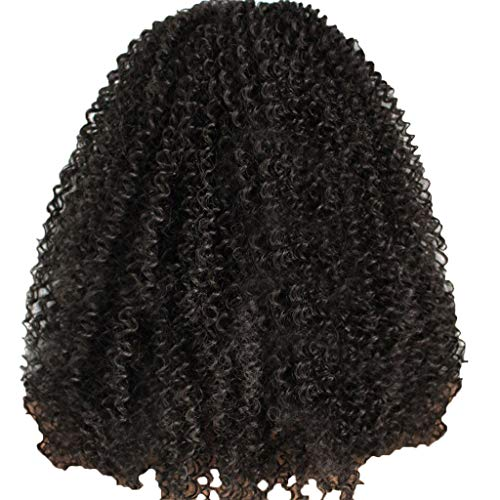 Jaromepower 18'' Lace Front Wigs Human Hair Wigs For Black Women Curly Brazilian Virgin Hair Glueless with Baby Hair Afro Kinkys Curly Hair Wig Synthetic Heat Resistant Remy Bob Wig For Ladies -