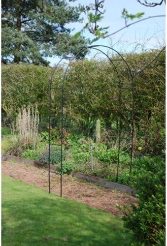 Kingfisher – jardín arco: Amazon.es: Jardín