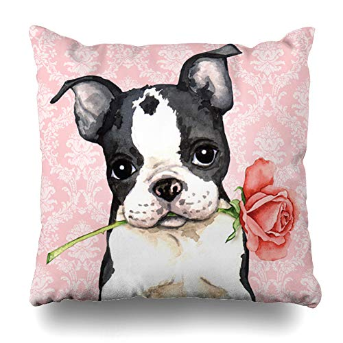 Suesoso Decorative Pillows Case 20 x 20 Inch Valentine Rose Boston Terrier Throw Pillowcover Cushion Decorative Home Decor Garden Sofa Bed Car