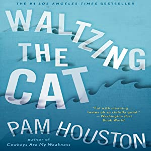 Waltzing the Cat Audiobook