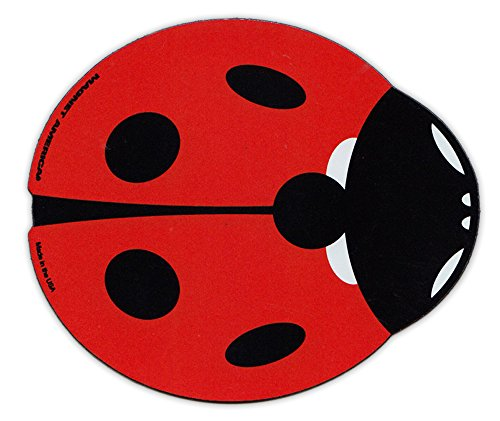 Magnetic Bumper Sticker - Red Ladybug (Lady Bug) Design - Good Luck, Make a Wish - 4