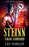 Steinn: A Viking Warrior Romance (Viking Surrender Book 9)