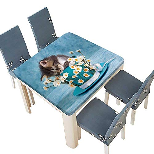 PINAFORE Tablecloth Waterproof Polyester Table Sleeping Maine Coon Kitten,Sitting in Large Cup with White Daisies Flowers Tablecloth for Wedding/Party 53 x 53 INCH (Elastic Edge) ()