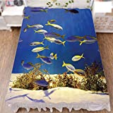 Bedding Duvet Cover Set 3D Print,Marine Plants and Tropical Fish School,Navy,Fashion Personality Customization adds Color to Your Bedroom. by 47.2''x78.7''