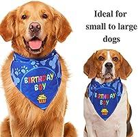 Bandana para perro Odi Style para fiesta de cumpleaños ...