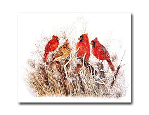 Red Birds Cardinals In Grass Animal Wildlife Wall Picture Art Print (Cardinals Pictures Of)