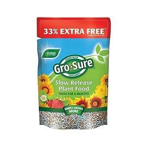 Westland Gro Seguro Lento Lanzar Planta Alimento 1 Kg + 33% Extra